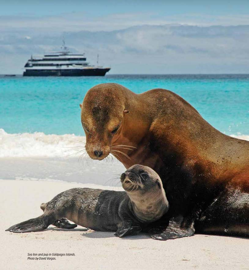1.Galápagos